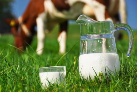 Che cos'è il latte fieno